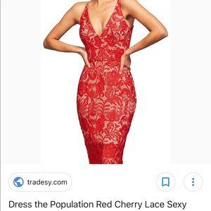 Dress the population 🔥😍🔥 Red lace midi  dress M